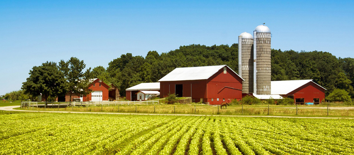 2007 Farm Bill Makes Room for Health